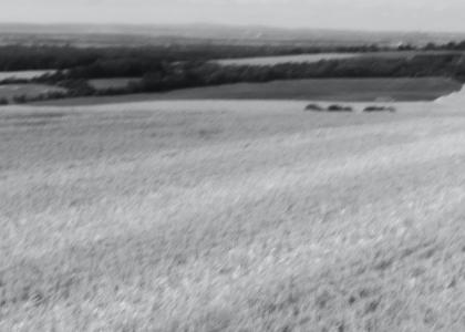 Hvordan kan en ny landbrugspolitik (CAP) understøtte kampen mod klimaforandringer?